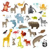 Cartoon animals collection, vector illustration