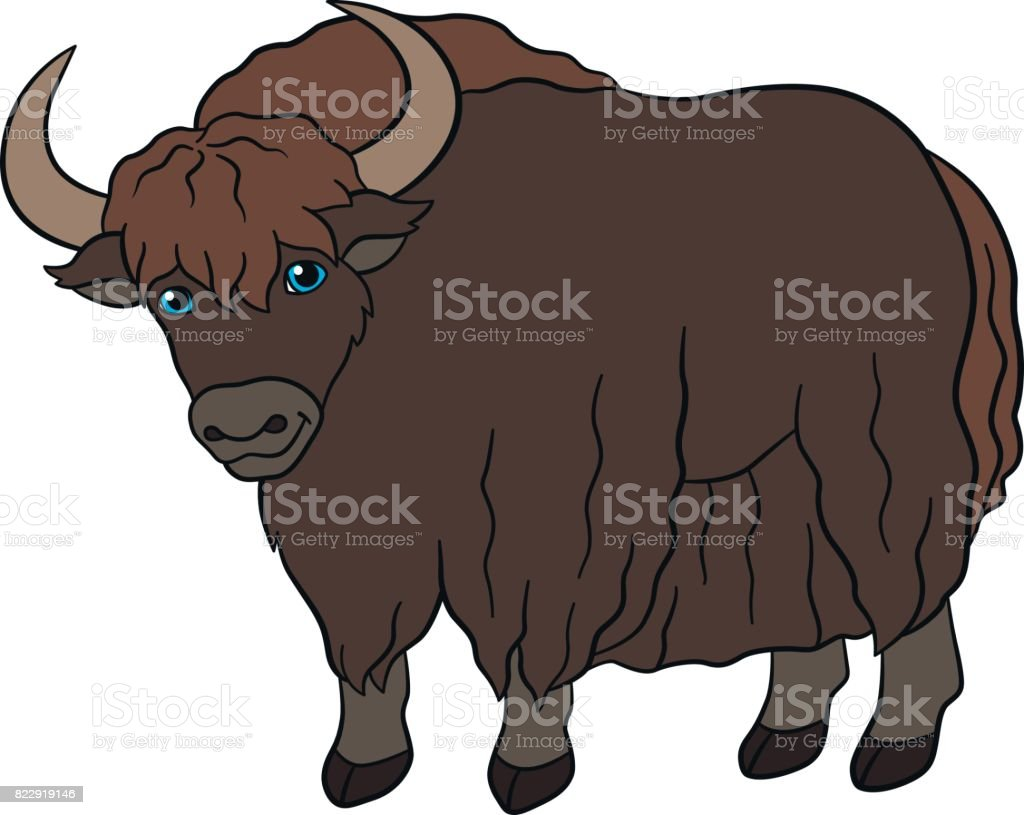 royalty free yak clip art vector images illustrations istock rh istockphoto com yak clipart free Yak Silhouette