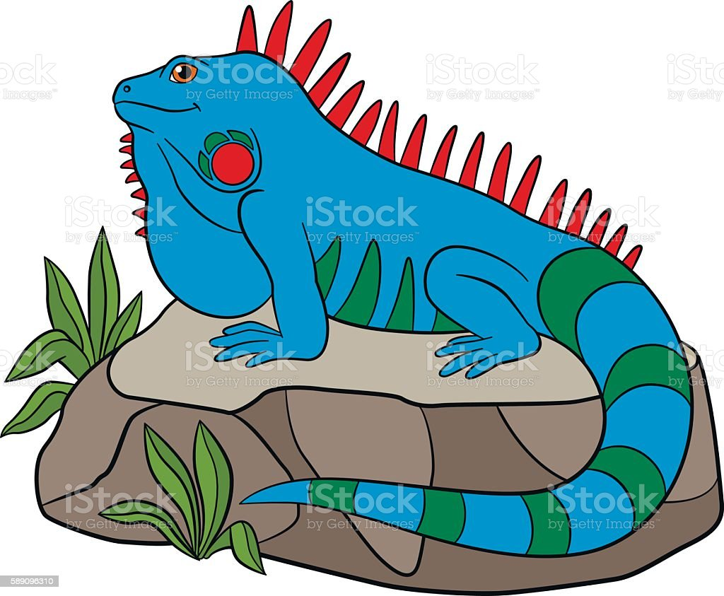 royalty free funny iguana clip art clip art vector images rh istockphoto com