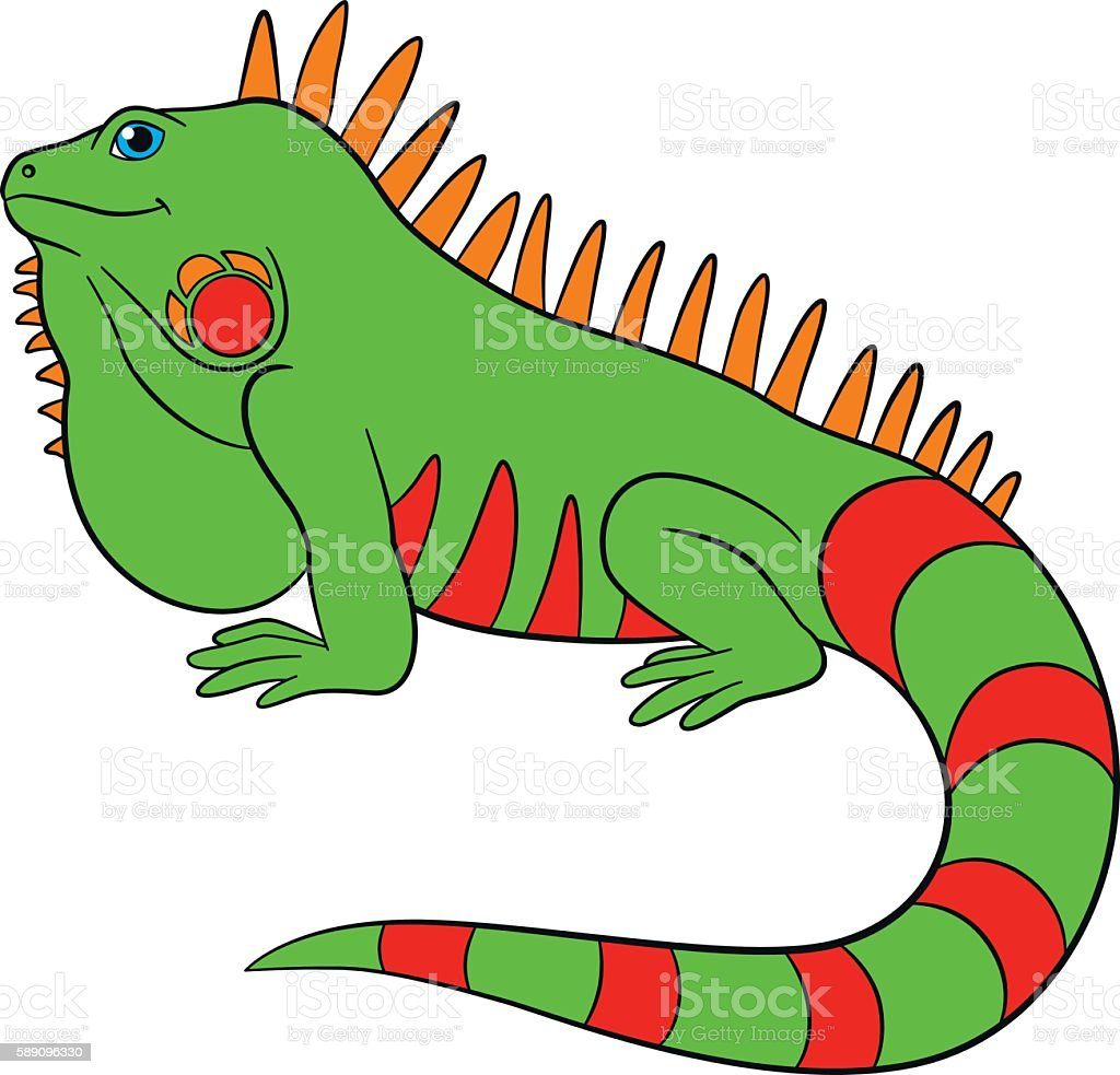 royalty free iguana clip art vector images illustrations istock rh istockphoto com iguana cliparty iguana clipart images