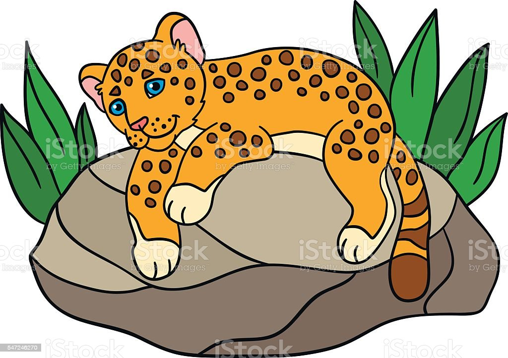 cartoon animals for kids little cute baby jaguar royalty free stock vector art - Kids Cartoon Animals