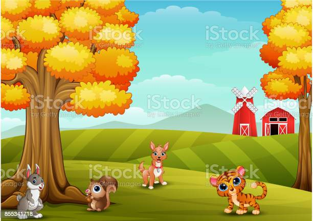 Cartoon animals in the farm background vector id855341718?b=1&k=6&m=855341718&s=612x612&h=y3g mz0undr5yru1imfi w9744lscqjfifro  f4cpq=