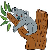 Cartoon animals. Little cute baby koala smiles.