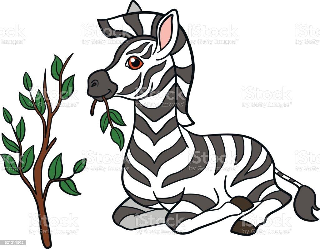 royalty free baby zebra clipart clip art vector images rh istockphoto com baby zebra clipart free cute baby zebra clipart
