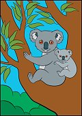 Cartoon animals. Mother koala sits with her little cute baby on the tree branch and smiles.
