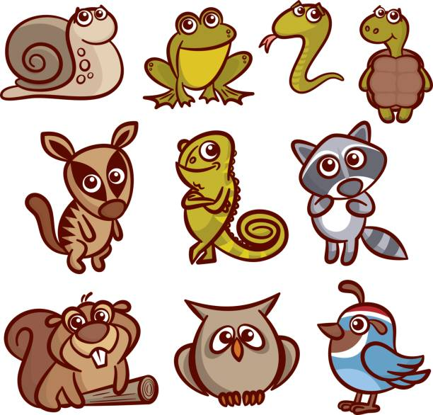 Cartoon Animals Set vector art illustration