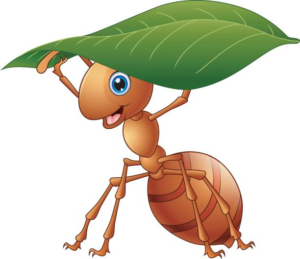 Cartoon ant holding a green leaf vector art illustration
