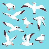 Cartoon atlantic seabird, seagulls flying in blue sky vector set. Sea gull drawing flight in various detail illustration