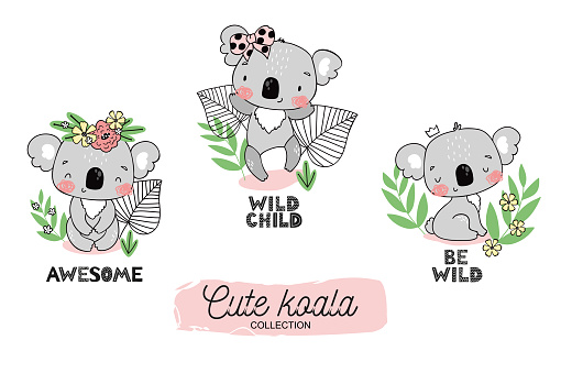 Cartoon baby koala cute jungle animal character collection. With blossom and crown on the head and sitting among leaves. Hand drawn tee design illustration.