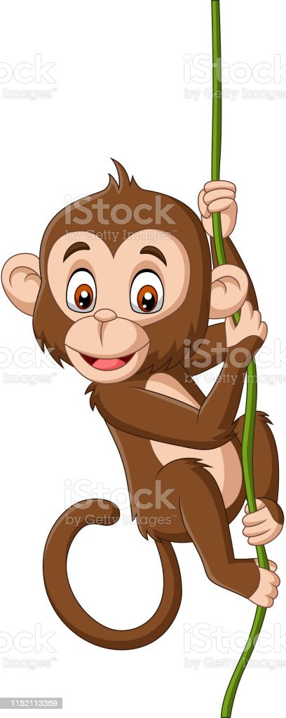 Vetores De Macaco Do Bebe Dos Desenhos Animados Que Pendura Em Uma