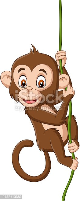 Vector illustration of Cartoon baby monkey hanging on a tree branch