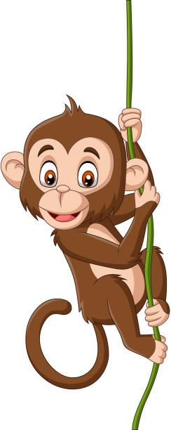 cartoon baby monkey hanging on a tree branch - monkey stock illustrations