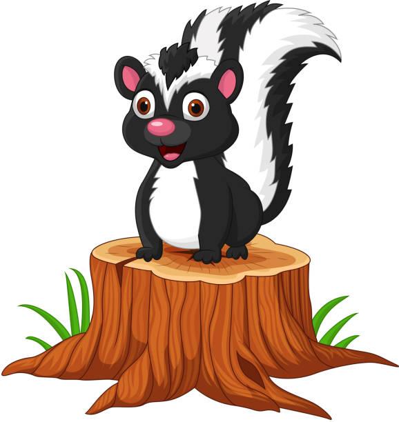 Cartoon baby skunk sitting on tree stump Vector illustration of Cartoon baby skunk sitting on tree stump skunk stock illustrations