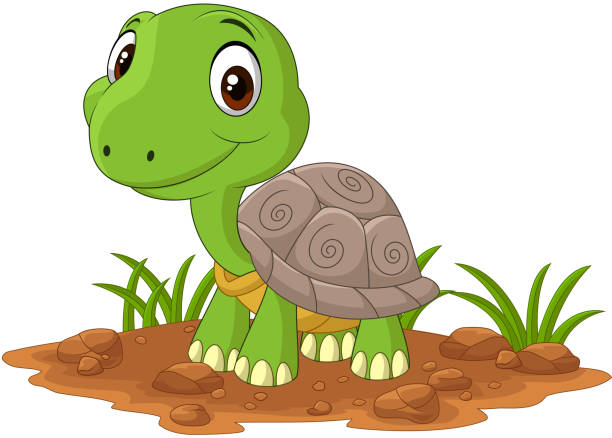 408 Turtle Standing Up Illustrations Royalty Free Vector Graphics