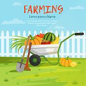 Cartoon background illustration of wheelbarrow with vegetables. Harvest farm vegetable and fruits vector