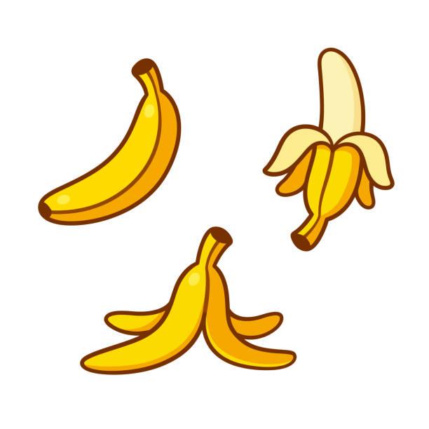 Cartoon bananas illustration set Set of cartoon banana drawings: single, peeled and banana peel on the ground. Vector clip art illustration collection. banana drawings stock illustrations