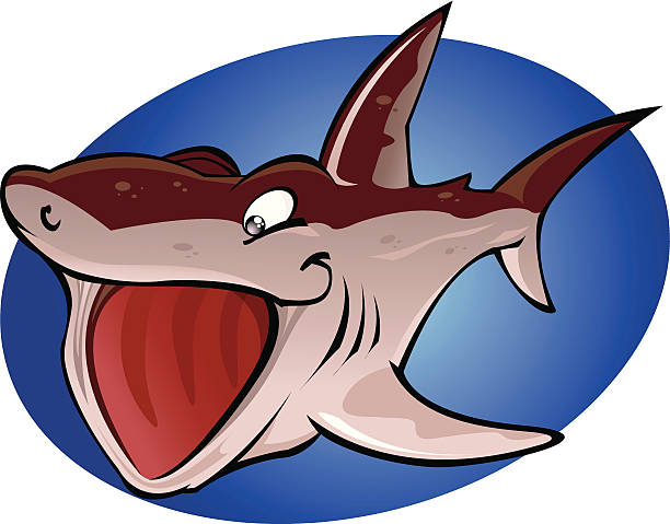 Cartoon Basking Shark vector art illustration