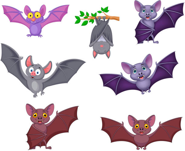 cartoon bats collection set - bat stock illustrations