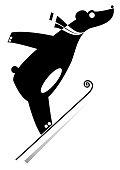 Cartoon bear a ski jumper black on white illustration