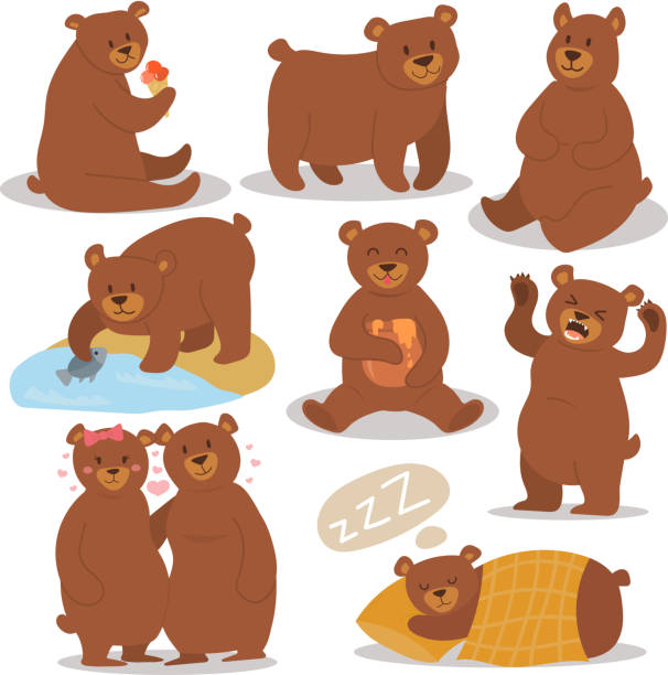 cartoon bear character different pose vector set - bear stock illustrations, clip art, cartoons, & icons