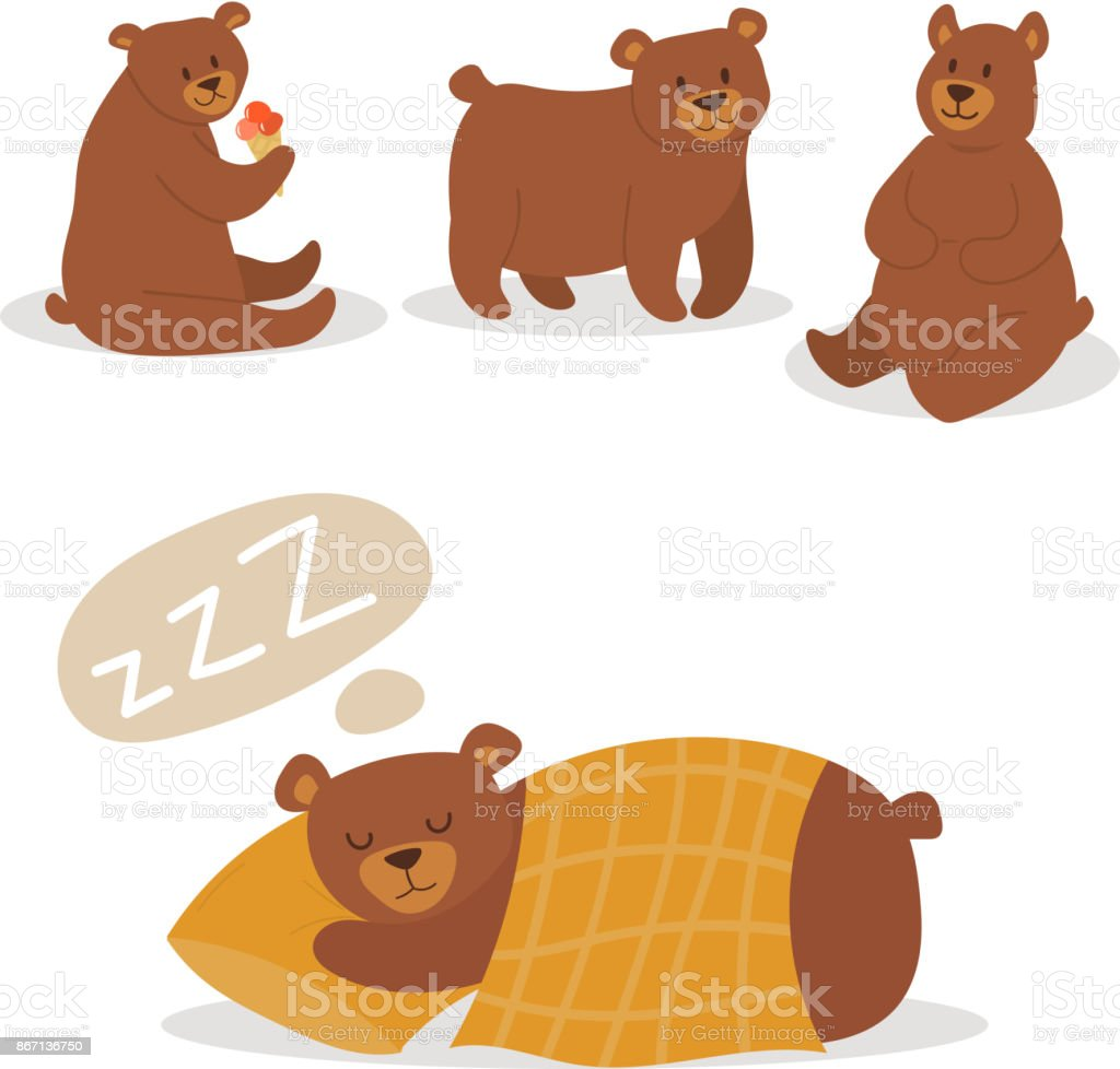 Cartoon bear character teddy pose vector set wild grizzly cute illustration adorable animal design vector art illustration