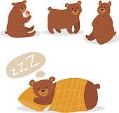 Cartoon bear character teddy pose vector set wild grizzly cute illustration adorable animal design