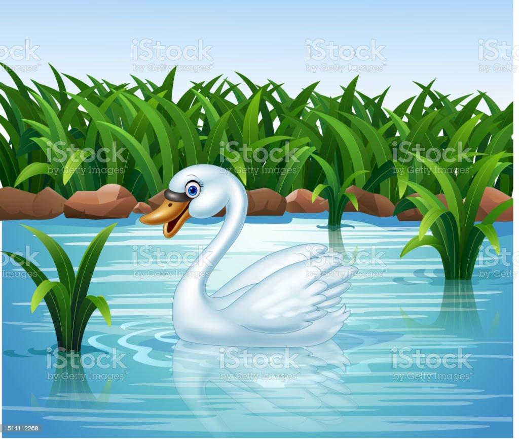 Cartoon beauty swan floats on river vector art illustration
