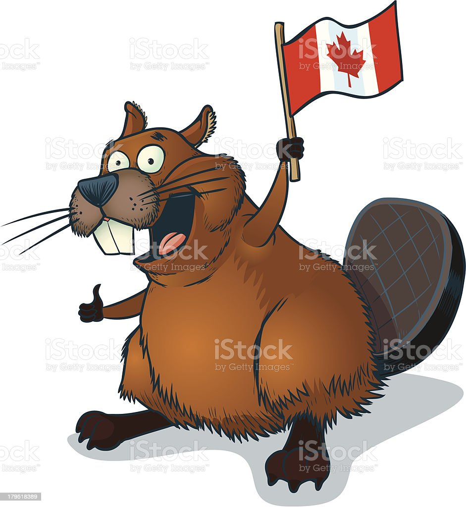 Cartoon Beaver with Canadian Flag vector art illustration