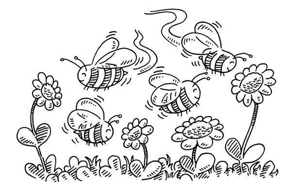 Cartoon Bees And Flowers Drawing vector art illustration