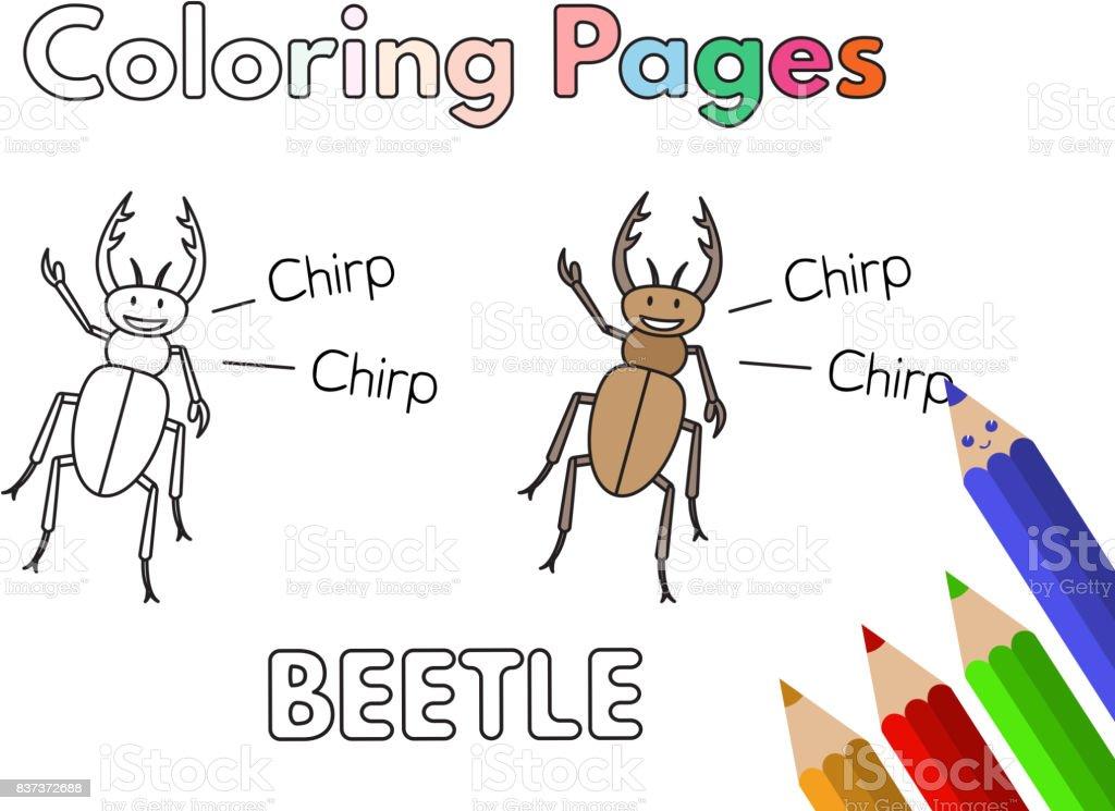 Libro De Historieta Escarabajo Para Colorear Illustracion Libre de ...