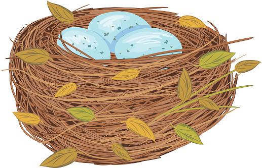 Cartoon Bird Nest With Blue Eggs
