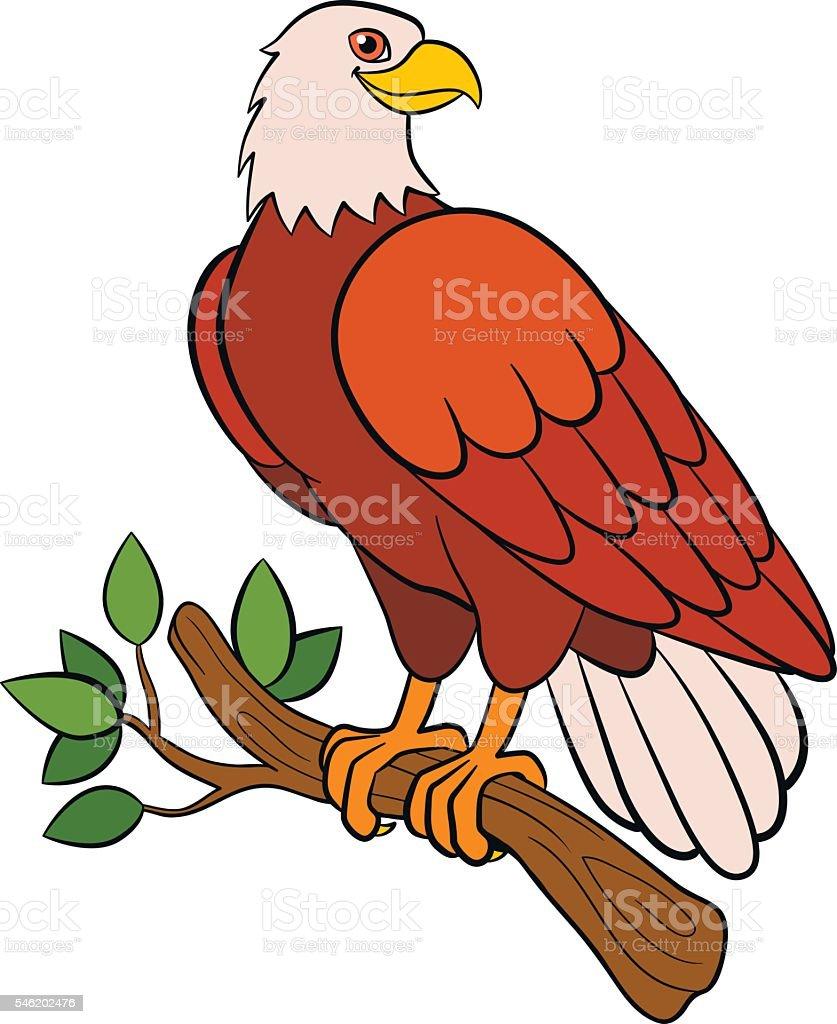 cartoon birds for kids eagle cute bald eagle smiles stock vektor art und  mehr bilder von adler - istock  istock