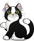 cartoon black and white cat