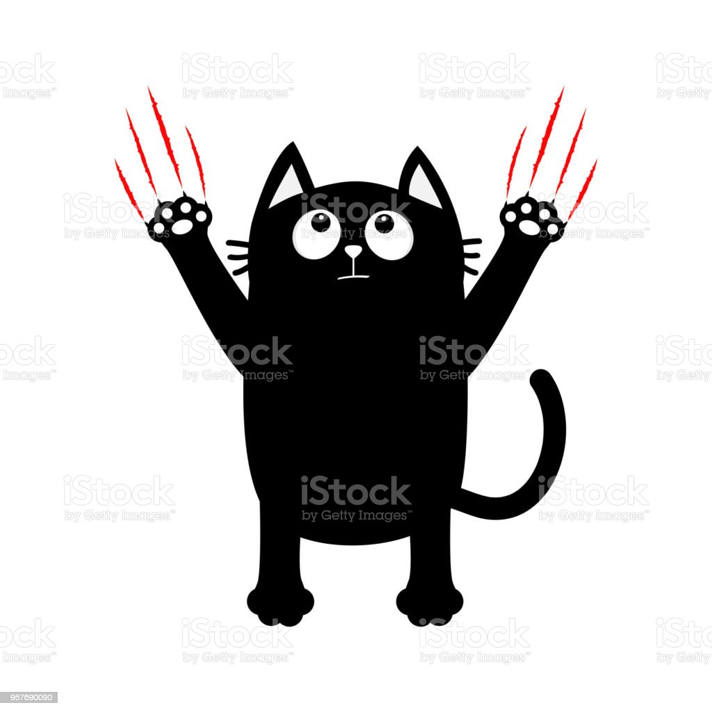 Chat Noir Dessin Anime Bloody Red Claws Piste Animale Gratter