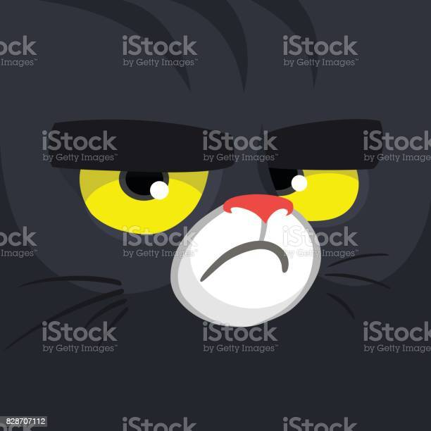 Cartoon black witch cat face cute square avatar or icon halloween vector id828707112?b=1&k=6&m=828707112&s=612x612&h=x102t0cha29m0aiwsdizgmei3pyjcpnj3blsntmtzmw=