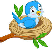 Vector illustration of Cartoon blue bird sitting in a nest