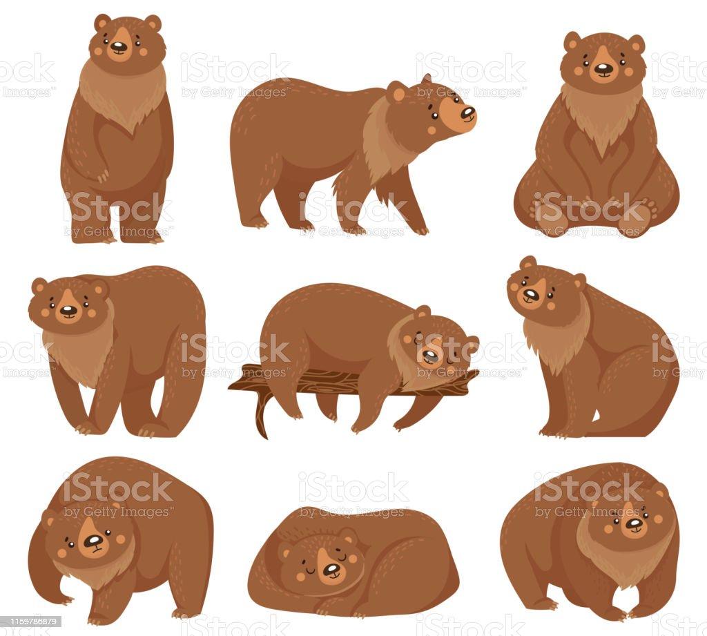 Vetores De Urso Marrom Dos Desenhos Animados Ursos Do Urso Animais Predadores Da Floresta Selvagem Da Natureza E Urso De Assento Isolados Ilustracao Do Vetor E Mais Imagens De Agressao Istock