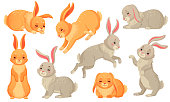 Cartoon bunny. Rabbits pets, easter bunnies and plush little spring rabbit pet. Easter mascot, fluffy hare character. Isolated vector illustration icons set