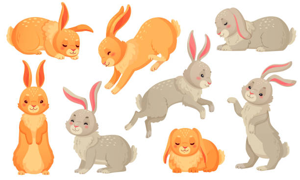 Cartoon bunny. Rabbits pets, easter bunnies and plush little spring rabbit pet isolated vector illustration set Cartoon bunny. Rabbits pets, easter bunnies and plush little spring rabbit pet. Easter mascot, fluffy hare character. Isolated vector illustration icons set rabbit stock illustrations