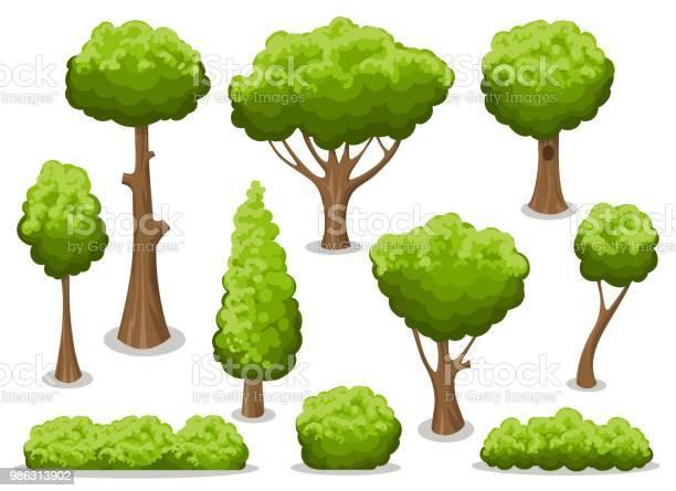 Cartoon bush and tree set vector id986313902?b=1&k=6&m=986313902&s=612x612&h=og2m94 dxiblnbsodbv2hujlckk3ykg7nhmjueht79i=