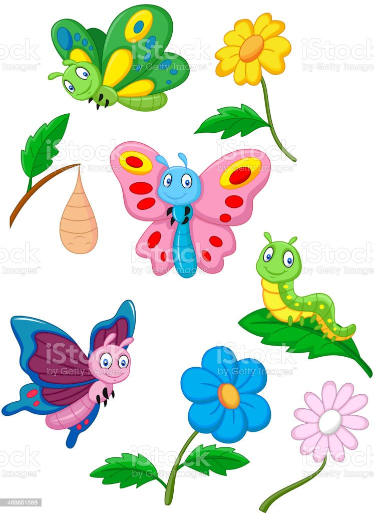 Cartoon butterfly, caterpillar and cocoon vector art illustration