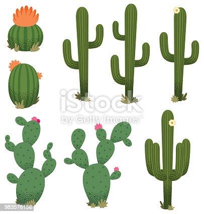 istock Cartoon Cacti 983576156