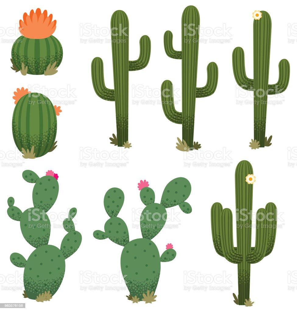 Cartoon Cacti vector art illustration
