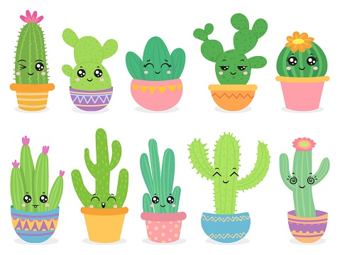 Cartoon cactus. Cute succulent or cacti plant with happy funny face, tropical smiling flower sticker, mexican plants color vector characters