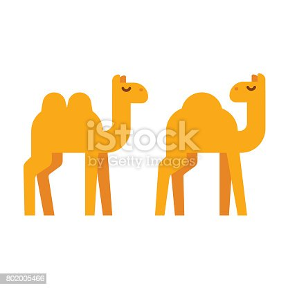 istock Cartoon camel illustration 802005466
