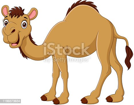 istock Cartoon camel isolated on white background 1199373634
