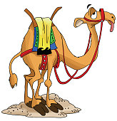 Cartoon camel waiting for his rider exhausted vector illustration
