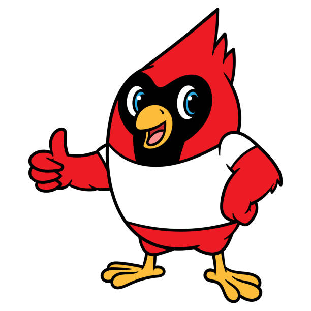 cartoon cardinal bird mascot - cardinal mascot stock illustrations, clip art, cartoons, & icons