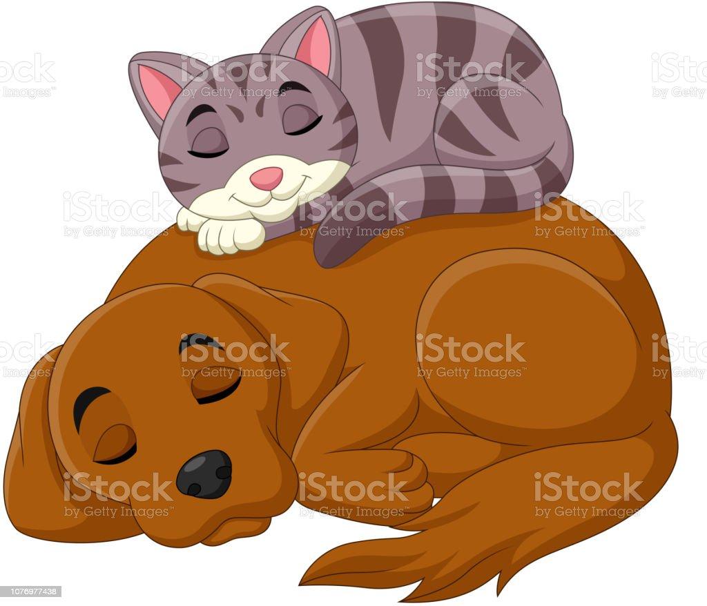 Vetores De Desenho Animado Gato E Cachorro Dormindo E Mais Imagens