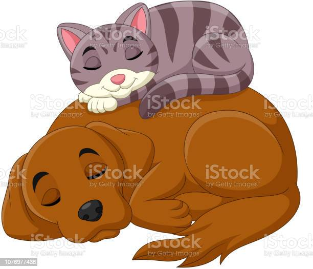 Cartoon cat and dog sleeping vector id1076977438?b=1&k=6&m=1076977438&s=612x612&h=9yqxipcjti6fpsyiehpamgsyhncay06if eo4j6n e4=